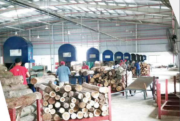Hệ thống phân xưởng lớn Pallet Minh Công